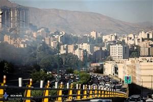 آتش سوزی در فضای سبز خیابان دشت بهشت تهران