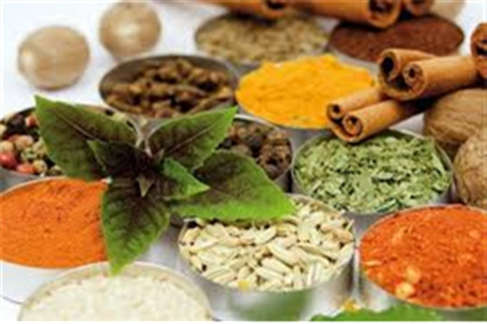 اختتامیه دومین جشنواره طبیعت گردی، طب سنتی و گیاهان دارویی
