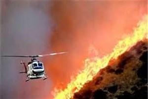عامل ۹۵ درصد تا ۱۰۰ درصد آتشسوزیها در ایران  انسانی  است/در سه ماهه اول امسال1550 هکتار جنگل سوخت