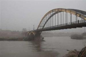 میهمانان اجلاس سازمان ملل از کانون های ریزگرد خوزستان دیدن می کنند