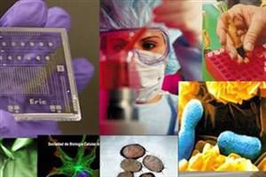 همراه با دومین جشنواره سلولهای بنیادی و پزشکی بازساختی/نمایش رشد چشمگیر شرکتهای فناور عرصه سلولهای بنیادی