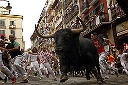 همراه با گاوهای وحشی پمپلونا: فستیوال سنت فرمین
