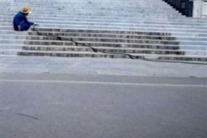 پروژه بازسازی محوطه کاخ اشرف آغاز شد