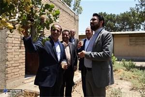 دانشگاه آزاد واحد ورامین در مسیر توسعه و پیشرفت
