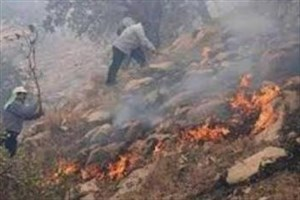 آتش سوزی بخشی از پارک ملی گلستان مهار شد