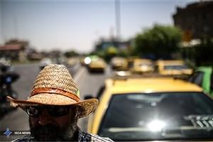رانندگان تاکسی  در معرض خطر بیشتری از مرگ خشونتآمیز قرار دارند