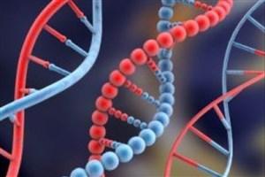 درمان ۲ نوزاد مبتلا به سرطان با تغییر ژن