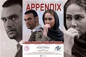«آپاندیس» به بخش مسابقه جشنواره مونترال راه یافت