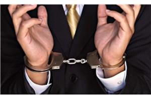 زوج کلاهبردارِ صرافی های تهران دستگیر شدند