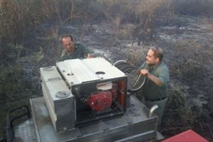 آتش در پناهگاه حیات وحش میانکاله بعد از 11 ساعت خاموش شد