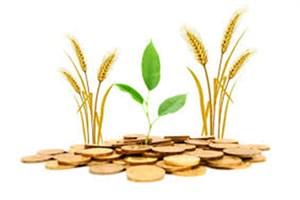 از بخشودگی تا  ارائه ی  تسهیلات برای بدهکاران بانک کشاورزی