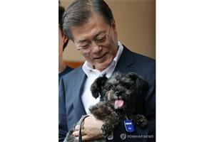 اقدام رییس جمهور کره جنوبی برای جلوگیری از خورده شدن یک سگ !