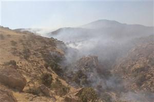 مهار آتشسوزی تالاب گندمان در چهارمحال و بختیاری