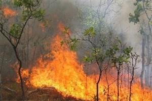 اعزام ۲ فروند بالگرد آتشنشانی برای اطفای حریق  جنگلهای ارسباران
