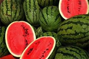هندوانه چربیهای بدن را میسوزاند