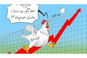 """گزارش بانک مرکزی از رکوردشکنی""""تخممرغ"""""""