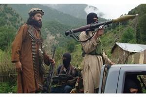 طالبان 235 روستایی را آزاد کرد