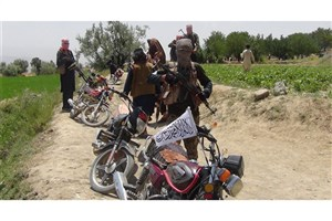 کشته شدن 3 سرکرده محلی طالبان در حمله هواپیمای بدون سرنشین آمریکا