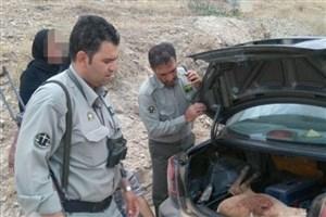 شکار قوچ با پوشش سفر خانوادگی در سرخه حصار
