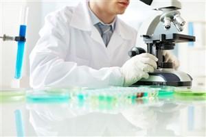 Scientists Develop Lensless Computational Microscopy