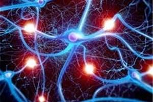 بکارگیری طب سنتی برای درمان تیک عصبی