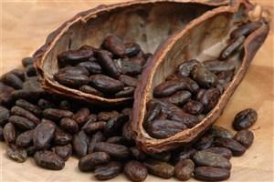 چگونگی تقلب در کره کاکائوها