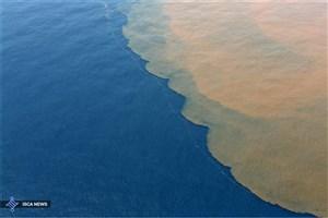 آب های خلیج فارس در محدوده هرمزگان آلودگی نفتی ندارد