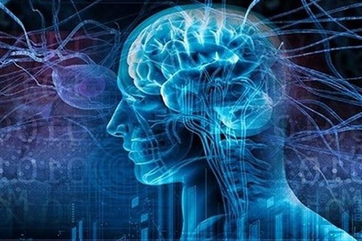 سیگنال مغز