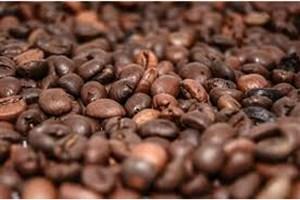 ۷ دلیل علمی برای مفید بودن قهوه