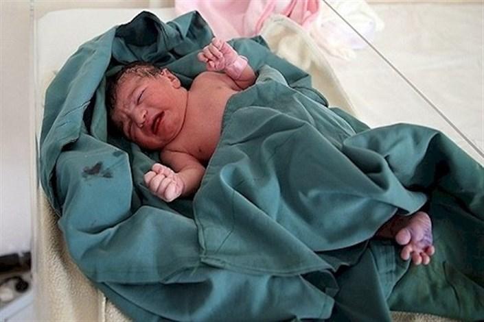جنین نوزاد