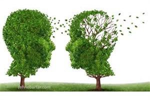آیا شما در خطر ابتلا به آلزایمر هستید ؟/مغز مه آلود چیست؟