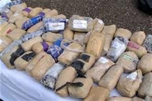 سگ های مواد یاب در گمرک غرب تهران 57 کیلو تریاک کشف کردند