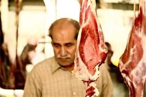 گلایه فعالان از بازار گوشت قرمز/ ضوابط  و مقررات در حوزه دامپزشکی به درستی اجرا نمی شود