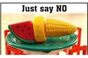 باید مردم را از مخاطرات محصولات تراریخته آگاه کرد/ اتهام دروغگویی به منتقدان تراریخته از سوی نماینده محیط زیست
