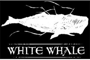 روی دستت با چاقو عکس نهنگ بکش/مرگ در 50 روز / ارتباط بازی نهنگ سفید  و خودکشی نوجوانان