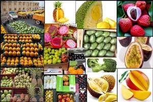 بازار میوههای خارجی ازرونق افتاد/عرضه مرکبات به بازار تا۵روز آتی