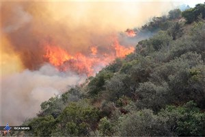مهار آتش سوزی نخلستان های «ناهوک» سراوان