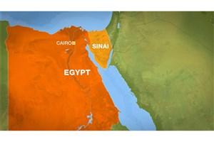 صحرای سینا باز هم جولانگاه داعش شد