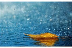 بارش منفی در 18 استان کشور/ بیشترین بارش در گیلان و کمترین بارش در استان یزد