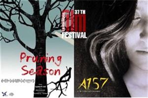 نمایش دو فیلم مستند در جشنواره «کمبریج» انگلستان