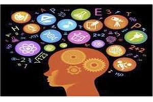 30 تیم برتر دانشآموزی در مسابقات علوم اعصاب شناختی رقابت میکنند