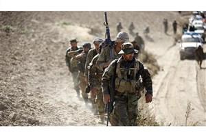 146 عضو طالبان و القاعده کشته شدند