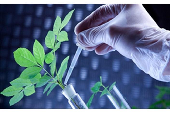 علوم گیاهی