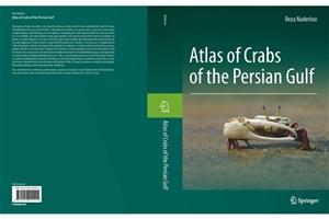انتشار کتاب استاد پردیس علوم دانشگاه تهران توسط اسپرینگر