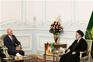دیدار حجت الاسلام رئیسی با سفیر آلمان در ایران