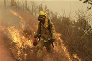 خسارات آتش سوزی در مراتع موجود در تالاب هامون
