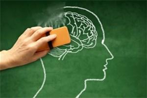 تلاش محققان کشور برای جلوگیری از روند رشد بیماری آلزایمر