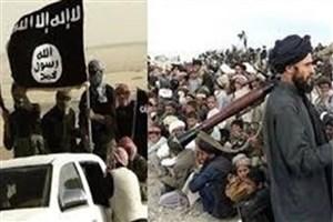 حمله طالبان به مراکز داعش در افغانستان