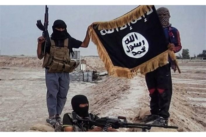 نتیجه تصویری برای والی داعش در منطقه القائم هنگام فرار کشته شد