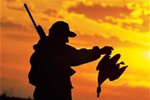 شکارچی متخلف پرنده در خمین دستگیر شد